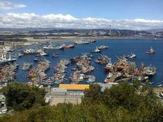 Bahia san vicente ,Talcahuano  CHILE.