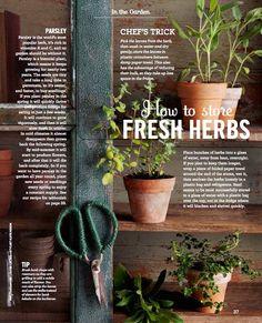 Behance :: Editing Food Magazine Issue 02 February