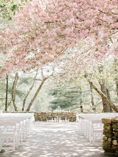 Cherry Blossom Wedding | photography by http://www.amyarrington.com