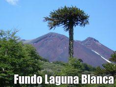 #fundolagunablanca #chile #nature #araucania Volcano, Mount Rainier, Chile, River, Mountains, Landscape, Nature, Chili Powder, Chili