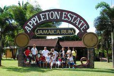 Appleton Estate - echter Jamaica Rum in der Karibik.