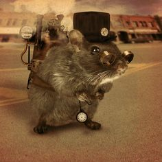 orig14.deviantart.net 78f6 f 2009 221 d c steampunk_mouse_by_the_human_fly.jpg