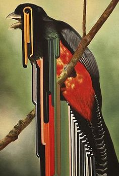 Digital Melting Parrot