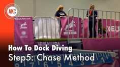 Dock Diving How-To Step #5: Chase Method
