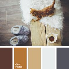 barley grain color, camel skin color, coat color, color dark sienna, color of tree, copper, dark gray, dirty white, gray with a touch of blue, light gray, reddish brown, shades of brown, shades of gray, silver.