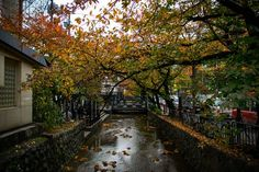 Autumn in Downtown Kyoto Photo by J. Marcos — National Geographic Your Shot