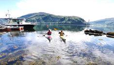 reisetips og reiseinspirasjon: I ett med naturen - Kajakkpadling på Dalsfjorden Lets Get Lost, One With Nature, Kayaking, Norway, Europe, English, Let It Be, Mountains, Travel