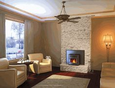 Pellet Burning Fireplace Insert is as efficient as burning wood, but more environmentally friendly. www.elitedeals.com $1849.00