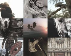 An aesthetic I did about Astrid :3