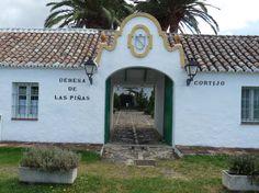 Cortijo Las Piñas, Tarifa (Cádiz)