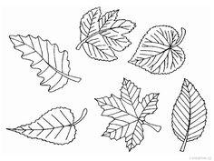 Kindergarten, Elementary Schools, Diy And Crafts, Hair Accessories, Creative, Outdoors, Autumn, Leaves, Primary School