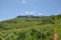 Hiking in the Royal Natal National Park, Royal Natal National Park, South Africa   Nomadic Existence