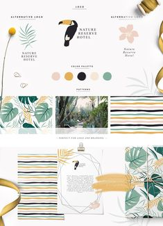 Tropic Paradise Collection by Julia Dreams on @creativemarket