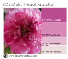Quelle que soit la pièce, le rose, dans toutes ses nuances, apporte joie et bonne humeur. www.chromaticstore.com #inspiration #couleur #rose