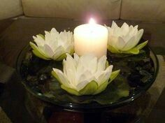 Water lily centerpiece