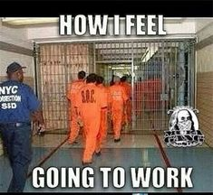 Humor Discover Best Funny Quotes About Work My Job Humor Feelings 69 Ideas Job Humor Nurse Humor Job Memes Funny Quotes Funny Memes Hilarious Motivational Quotes Work Jokes Work Funnies Job Humor, Nurse Humor, Job Memes, Funny Quotes, Funny Memes, Hilarious, Motivational Quotes, Work Jokes, Work Funnies