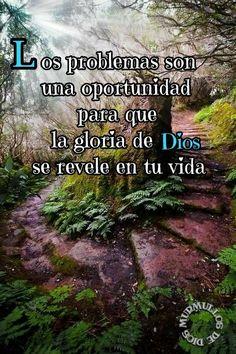 Los problemas son una oportunidad para que la gloria de Dios se manifieste en tu vida