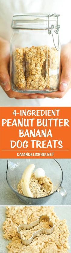 Peanut Butter Banana Dog Treats ❤  All you need is 4 ingredients for these hypoallergenic treats! And the coconut oil makes these so HEALTHY for your pup!