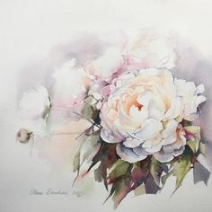 No photo description available. Peony Painting, Watercolor Plants, Watercolor Artists, Watercolor Rose, Watercolor Illustration, Watercolour Painting, Painting & Drawing, Watercolour Drawings, Watercolors