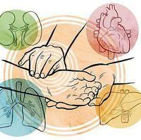 Medicina Tradicional Chinesa - Acupuntura, Moxabustão, Tuiná, Chi kung, Lian Gong, Dietoterapia