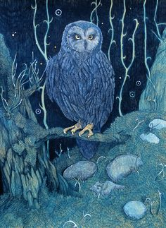Blue Owl by yanadhyana.deviantart.com on @DeviantArt