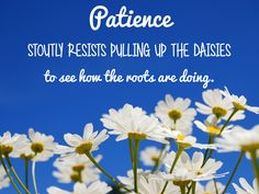 Patience stoutly resists pulling up the daisies to see how the roots are doing. Neal A. Maxwell