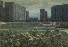 Kaden-Bandrowskiego Bemowo 1986