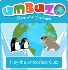 Antarctica: Facts for kids Facts For Kids, Antarctica, Penguins, Play, Penguin
