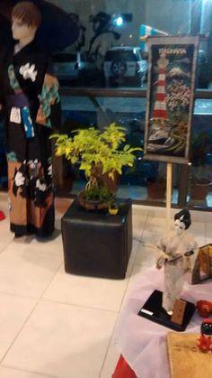 Especies autóctonas de tamaños pequeños estarán exhibiéndose en la Expo Bonsai. Se podrán visitarlas, con entrada libre y gratuita, este sábado 5 y domingo 6, desde las 19, en Casa de las Culturas.
