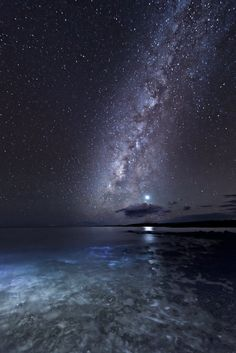 M i l k y  W a y Mar E Terra, Paysage Nocturne, Gods Creation, Cosmos, Stars And Moon, Night Skies, Outer Space, Tennessee Williams, Constellations