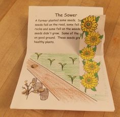 """Parables of Jesus Pop Up Book- Sower... they have a lot of these little """"books"""" on this site!"""