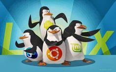 Linux #linux