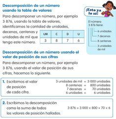 #ClippedOnIssuu desde Enciclopedia Didáctica 2