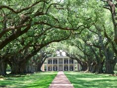 Best Plantation Mansion Tours Near New Orleans including the top 10 Southern Antebellum Mansions. How to get to the top Southern antebellum mansion hotels near New Orleans for guided tours or to stay overnight. Southern Plantation Homes, Southern Mansions, Southern Homes, Southern Belle, Southern Charm, Plantation Houses, Nature, Plantation Homes, Victorian Houses