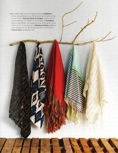 Branch with hooks for hanging shawls