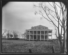 Belle Chasse Plantation, Louisiana