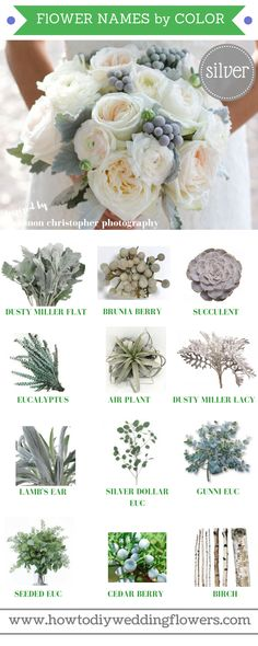 Wedding Trends 2018 ! How To DIY Wedding Flowers! Silver Grey 2018 Wedding Flower Trends. Easy DIY Tutorials and How to Tips & Tricks! #diywedding #diyflowers #howtomakeabouquet www.howtodiyweddingflowers.com