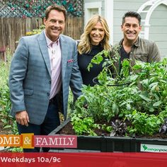 Stoked that Jamie Durie gave our first plug on USA tele last week. A ripper little exposé on Hallmark network