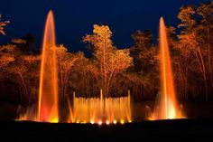 musical dance fountain at Thenmala