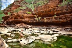 On the river walk, hop across the rocks to take a dip in the cool water. Kilbarri WA Kalbarri National Park, Beach Shack, Rock Pools, River Walk, Snorkelling, Beach Town, Stunning View, Great View, Kayaking