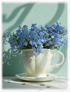 forget me nots Beautiful Flower Arrangements, Floral Arrangements, Fresh Flowers, Beautiful Flowers, Spring Flowers, Pot Jardin, Forget Me Not, Flowers Nature, Ikebana