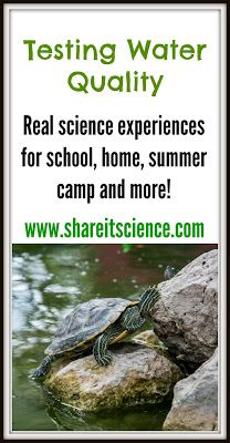 Science Teacher's Toolbox: Testing Water Quality. Great ideas, links and resources for teaching about water quality. pH, collecting creatures and learning where your drinking water comes from. Great for school, home, scouts, camp, babysitting, etc.