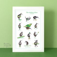 Kiwi Bird, Rare Species, Hopscotch, Bird Illustration, Canadian Artists, Affordable Art, Funny Art, Bird Prints, Bird Art