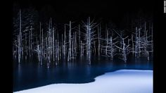 """<strong>Borderline: </strong>Named the best nature photo this year, Japanese photographer Hiroshi Tanita describes his photo as """"the boundary line between blue and white, ice and snow which appeared in the pond to which thin ice came into winter.""""<br />Copyright: © Hiroshi Tanita, Japan, 1st Place, Open, Nature, 2017 Sony World Photography Awards"""