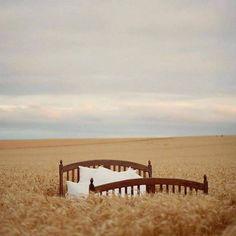 """Curcubeu din al meu Tu pe Instagram: """"Oare cât de departe este prea departe?!..."""" Meditation Pillow, Jacquemus, Konmari Method, Market Baskets, Marie Kondo, Virtual World, Garden Bridge, Garden Tools, The Outsiders"""