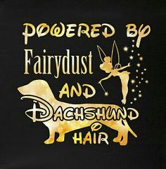 Powered By Fairy Dust and Dachshund Hair Dachshund Facts, Dachshund Funny, Dachshund Quotes, Dachshund Puppies, Daschund, Dachshund Love, Weenie Dogs, Doggies, Long Haired Dachshund