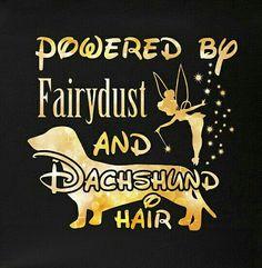 Powered By Fairy Dust and Dachshund Hair Dachshund Facts, Dachshund Funny, Dachshund Quotes, Dachshund Puppies, Dachshund Love, Weenie Dogs, Doggies, Long Haired Dachshund, Daschund