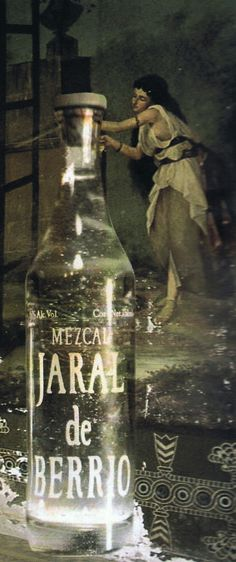 31 Best Mezcal Images Alcohol Mexico Beverage