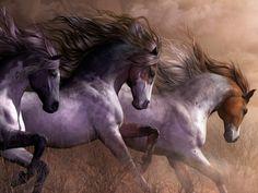 Des chevaux au galop dans la poussière