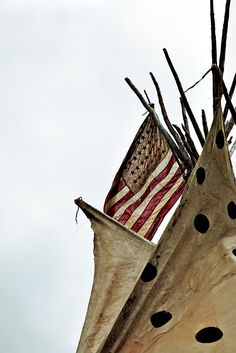 Native Americans (the TRUE original Americans of our land!) flying the American flag from a tipi. Calamity Jane, Indian Heritage, My Heritage, Native American History, Native American Indians, Native Indian, Indian Art, Old West, American Spirit